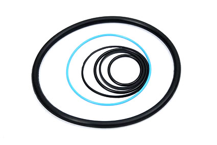 O'Rings Real Polymers
